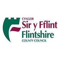 Flintshire-logo-200px-v2